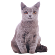 1pcs 50cm Soft 3D Simulation Stuffed Cat Toys Double-side Seat Sofa Pillow Cushion Cute Plush Animal Dolls Gifts