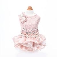 High End Luxury Dresses Wedding Princess Banquet Dog Pet Clothes Clothing Autumn Spring Shih Tzu Chihuahua