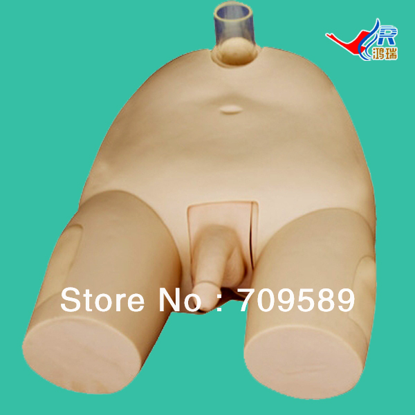 ISO Advanced Male Bladder Puncture Simulator, Vesicopuncture Training Model iso advanced infant arterial puncture arm model arterial puncture training simulator