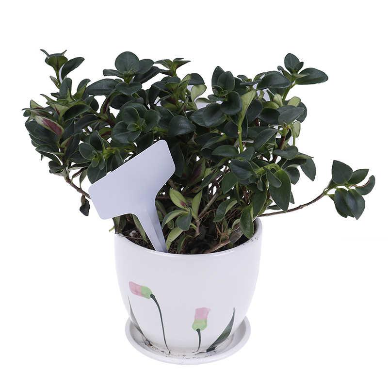 100 個ガーデンラベル園芸植物分類ソート記号タグチケットプラスチック書き込みプレートボードプラグインカード白