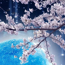 Custom Mural Wall Paper Cherry Blossom Tree by the Moon