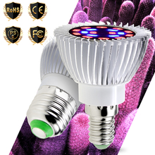 phytolamp Led Grow Light E14 Fito LED 220V Bulb For Plant Growth E27 Hydroponics Growing Lamp 20W Lighting Greenhouses