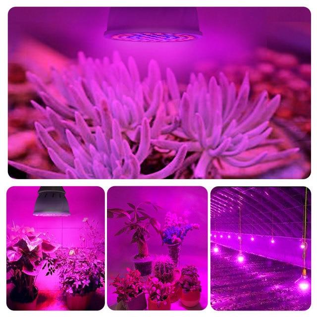 Full Spectrum E27 220V LED Plant Grow Light Bulb 2