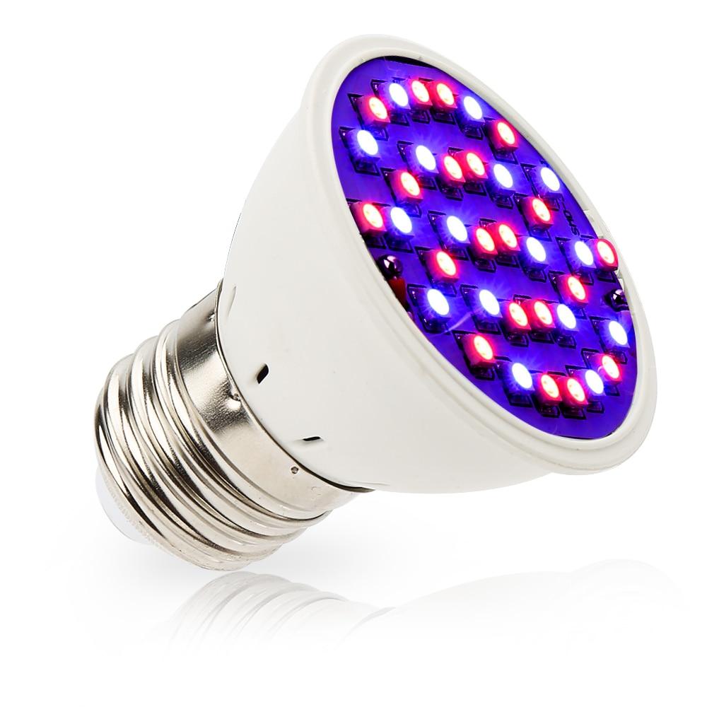 4pcs / lot 4W E27 20Red 16Blue 36Leds LED Bitki Çadır Akvarium - Professional işıqlandırma məhsulları - Fotoqrafiya 2
