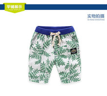 Loose Boys Shorts Summer Children Beach Wear leaf Pattern Boys Bottom Pants Three-10 Ages Kids Boys Sports Shorts