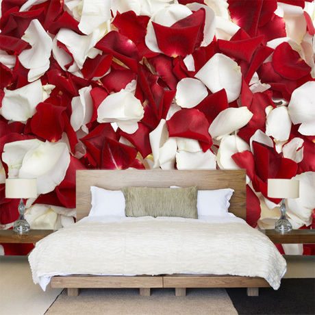 5d Papel Mural Red And White Rose Flower Petals 3d Wall Mural For