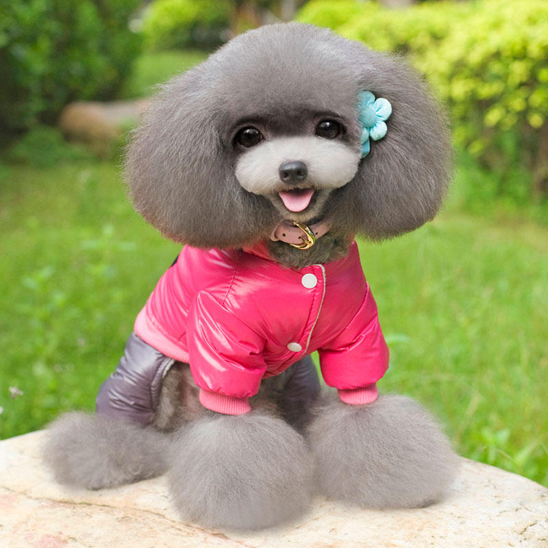 New Clothing Pet Dog Clothes for Pet dog Dog Harness Coat Hoodie Thicken Winter Down Jackets Two Colors S-XXL In stock PT044