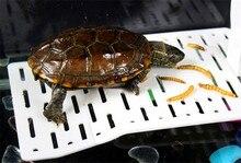 23CM Transparent Acrylic Terrace Reptiles Turtle Terrarium Floating Basking Platform Island Climb Aquarium Decor