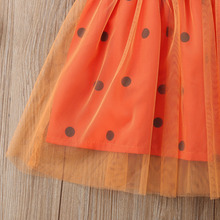 Girl Princess Flower Dress Halloween Pumpkin Costume