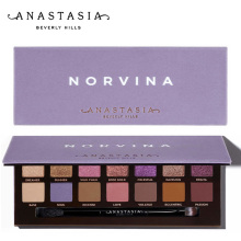 Anastasia makeup make up NORVINA EYE SHADOW PALETTE Beverlying Hills Makeup Powder Contour anastasia beverly hills palette