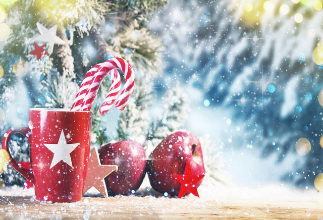 horizontal christmas decorations for home photography backdrops christmas background photo background christmas backdrop xt6165