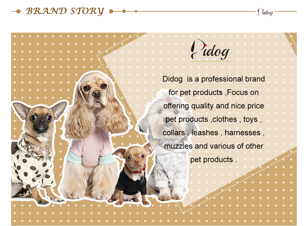 Personalized Dog Tags Engraved Cat Puppy Pet ID Name Collar Tag Pendant Pet Accessories Bone/Paw Glitter 38