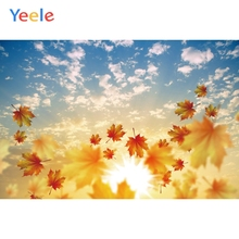 купить Yeele landscape Fallen Red Maple Leaves Sky Cloud Photography Backdrops Personalized Photographic Backgrounds For Photo Studio дешево