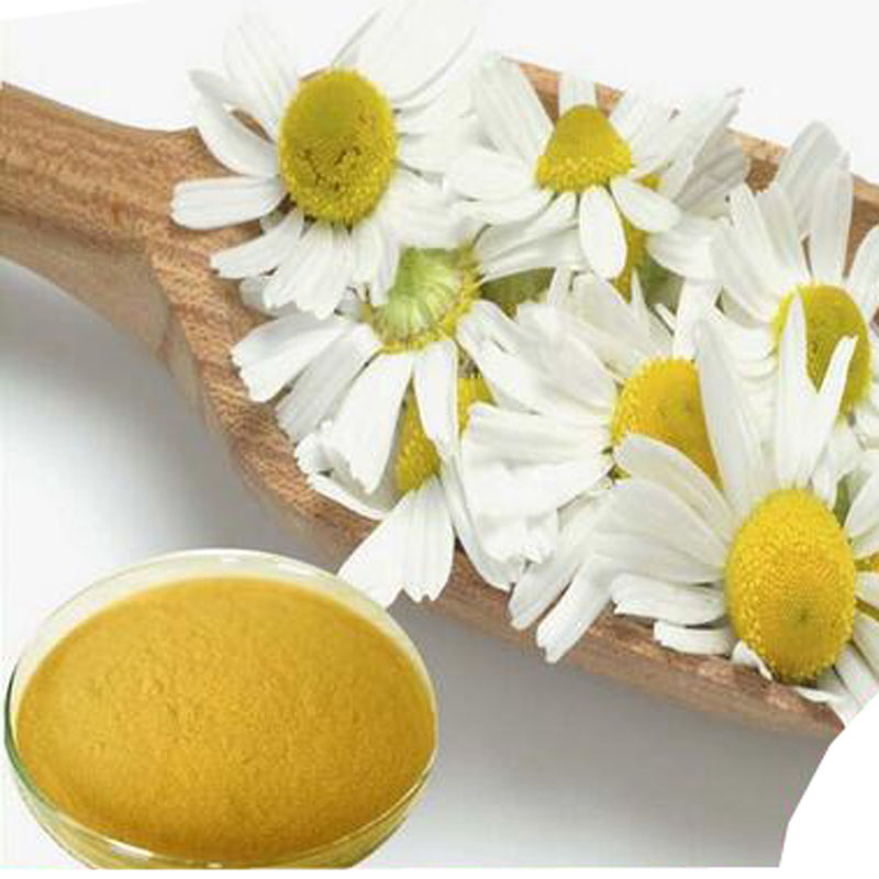 high quality Plant Extract, high quality orginic factory supply 100% natural feverfew extract 10:1 1000g hot sale manufacturers to supply high quality 100g wild chrysanthemum extract 30 1