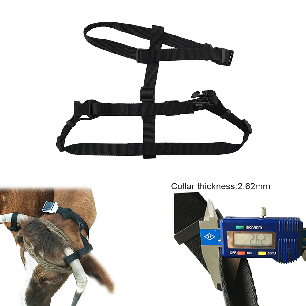 Best GPS Accessory Pet Collar For Solar-powered GPS Tracker RF-V26 RF-V26+ Belt For Cow Sheep Horses Big Animals No GPS Include