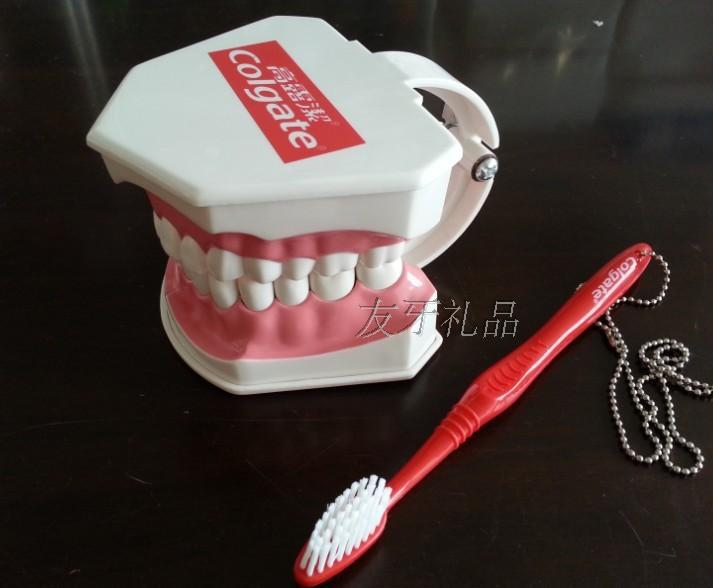 US $23 99 |COLGATE Demonstration Tooth Model Movable Teeth Dental Gift  Tooth Model with Toothbrush-in Medical Science from Office & School  Supplies on