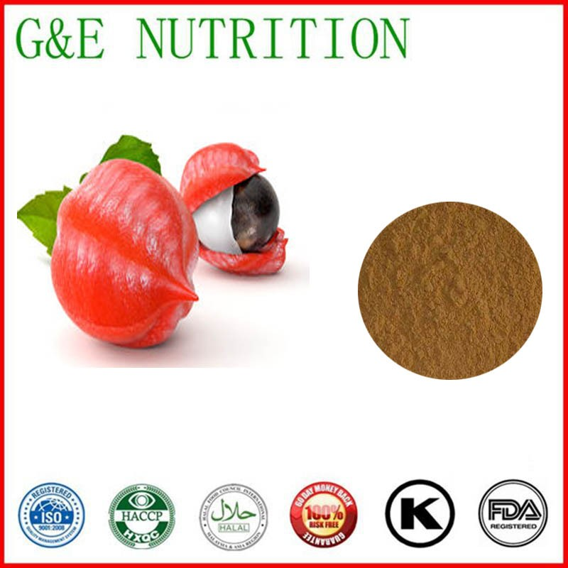 Hot sale& factory price Guarana extract powder with free shipping acanthopanax root extract powder
