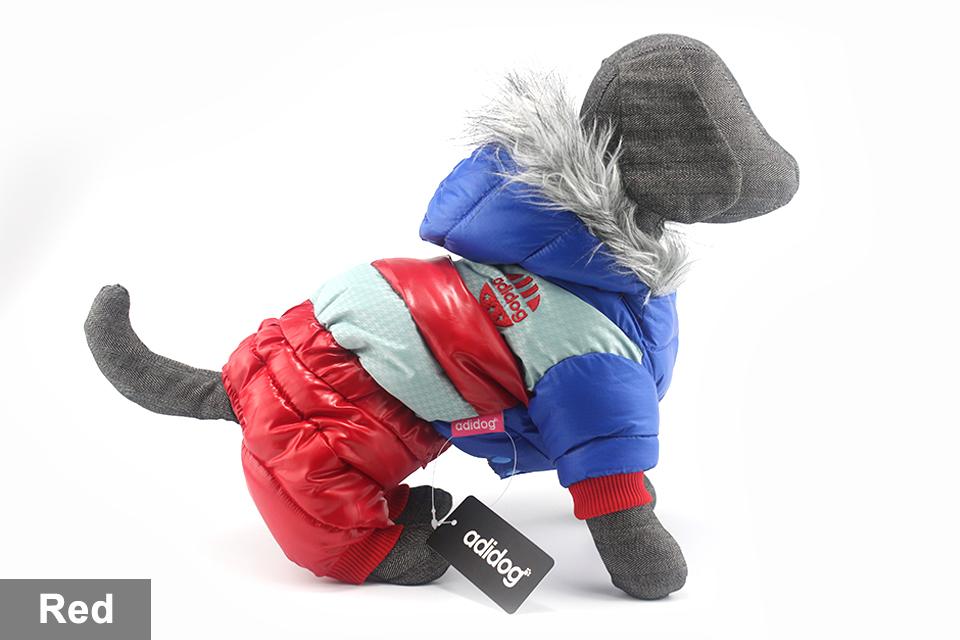 Chaqueta impermeable de invierno para perro 43