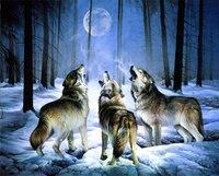 5D DIY Diamond Embroidery landscape animal wolf  Diamond Painting Cross Stitch Rhinestone Mosaic Home decor gift