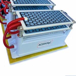 Image 3 - 220 فولت/110 فولت 20 جرام السيراميك مولد أوزون الأوزون مزدوجة متكاملة طويلة العمر لوحة سيراميك مولد الأوزون الهواء منقي الهواء الذي يعمل بالماء