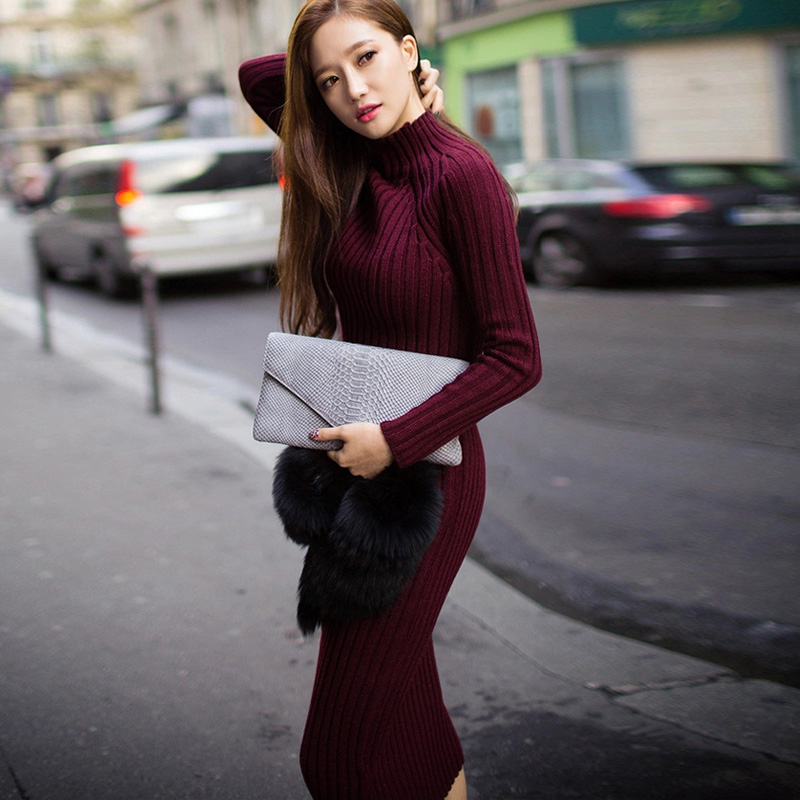 Elegant Ladies Spring Autumn Pullover Turtleneck font b Sweater b font Dresses font b Women b