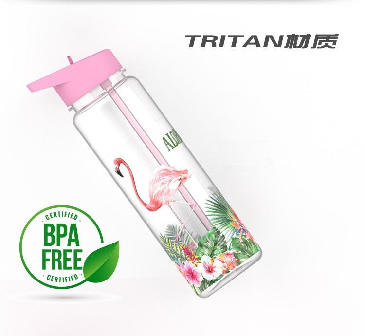 HTB1RB0eXoT1gK0jSZFhq6yAtVXaI Bpa Free 750ml 100%Tritan Sports Outdoor Straw Water Bottle With Flamingos Printing My Drink Juice Handle The Unicorn Kettle