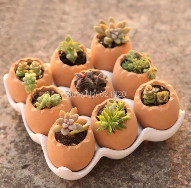 Compra bandeja de huevos de cer mica online al por mayor for Bandejas para huevos