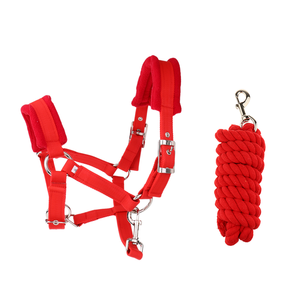 Soft Padded Adjustable Horse Headcollar (Middle) + 2.5 Meters Lead Rope