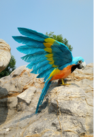 simulation bird parrot foam&feathers about 40x60cm spreading wings parrot handicraft,cosplay ,garden decoration toy gift a1809