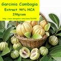 250 gram Naturaleza Polvo de Extracto de Garcinia Cambogia HCA 90% envío gratis
