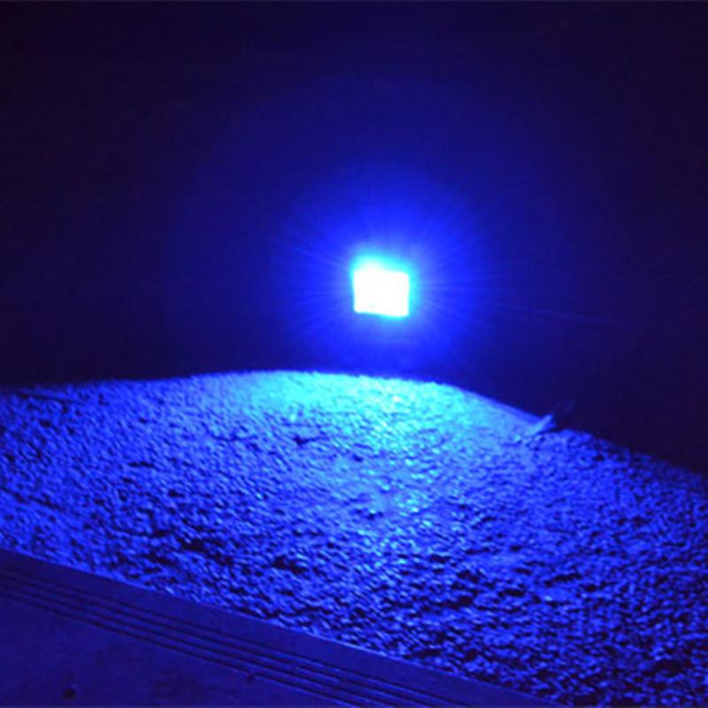 spotlight  (3)