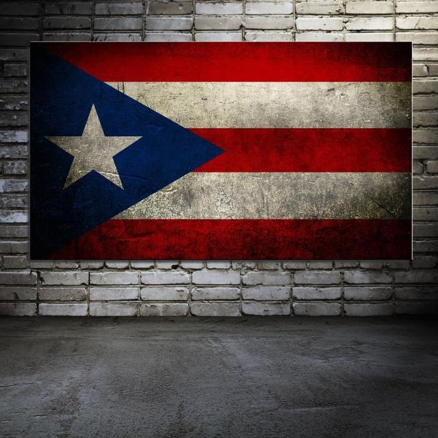Puerto Rico Flag Digital Realist Frameless Oil Painting Canvas Unframed Spray Square Design Not Handmade