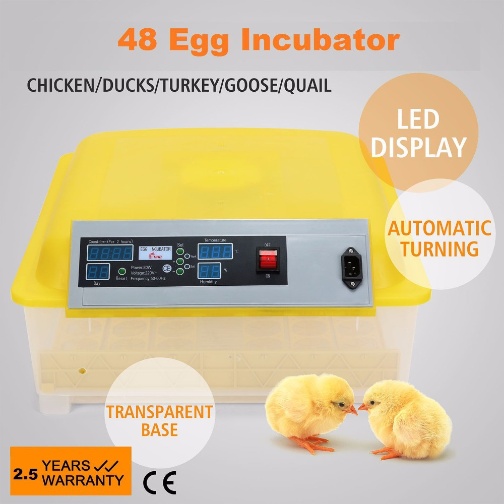 Aliexpress.com : Buy Automatic 48 Egg Incubator for Chicken QUAIL ...