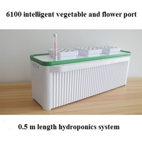 Mulifunctiinal DIY Grow vegetables fruit flower in living room or balcony Hydroponics system without earth green garden
