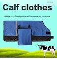 Calf Clothes, Cow Clothes, Calf Suits, Calf Dress for Dairy Farm
