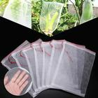 10Pcs/Lot Garden Veg...