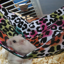 Buy    Hanging Bed For Rat Hamster Ferret Parrot Mouse    online
