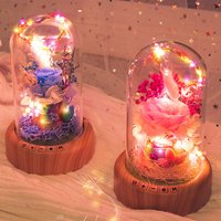 Streamer Bottle Wireless Bluetooth Speaker Rechargeable LED Night Light With Flower in Glass Home Decoration Table Lamp