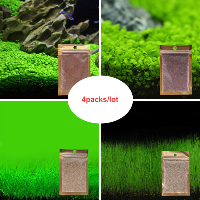 Aquarium Plant Seeds Water Aquatic Grass Seeds Easy Planting Ornamental Fish Tank Landscape Plant