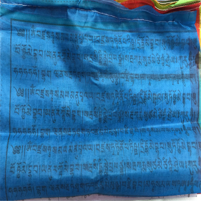 US $4 89 |Buddhist Supplies Tibetan Buddhist Prayer Flags 26cm 20  Pieces/roll 5 3 metersTibet Lung Ta Wind Hourse Flag Temple Decoration-in  Flags,