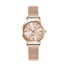 Ananke Women's Fashionable Casual Quartz Watch Waterproof Female Simple Gold Stainless Steel Mesh Band Clock Montre Femme