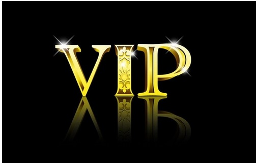 VIP Für Curling Pinsel