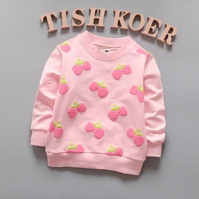 1piece-lot-100-cotton-2017-Cute-Little-zebra-baby-outerwear-3