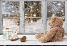 Laeacco Toy Bear French Window Snow Baby Children Portrait Scene Photography Backgrounds Photographic Backdrops For Photo Studio