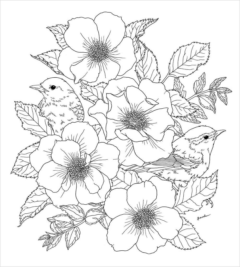 New Hot Chinese Garden Coloring Book flower bird anti-stress coloring books  for adults children kids