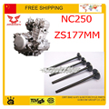 NC250 valve 4 vavles 250cc zongshen engine parts 250cc engine valve zongshen engine valve  xmotos apollo KAYO BSE 250cc 4Vavles