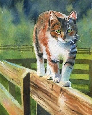tortoise shell tabby cat original art top art oil painting 24 inch art