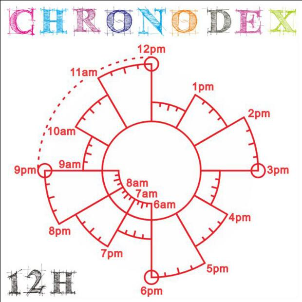 Vintage 12/24 Hour Time Stamp Chronodex Time Pie Charts for Day - day planner