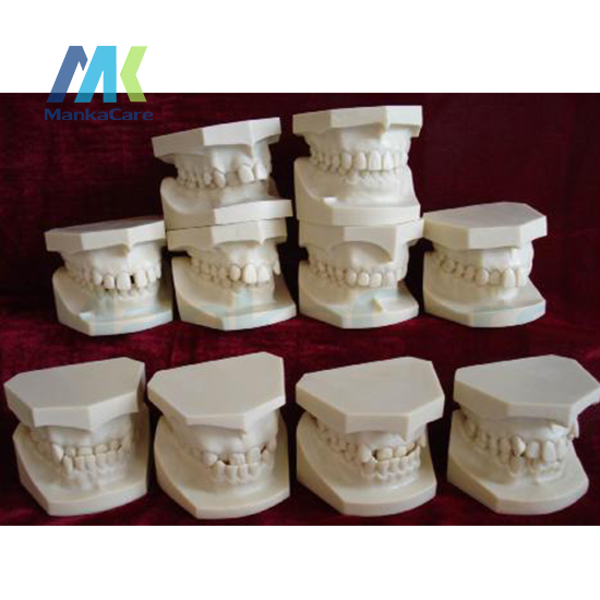 Models With Designed According To Dr.Angel`s Classification Of Malocclusions. Aset Of 10 Models Oral Model Teeth Tooth Model