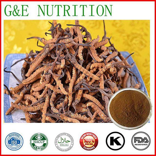 Melhor venda Yarsagumba Extrair/Extrato de Cordyceps 100 g/lote